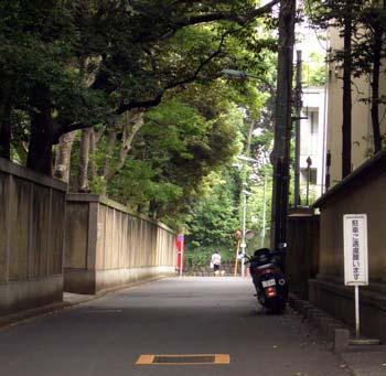110704motohikawa