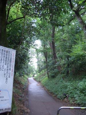 5698_130825kamakura_2
