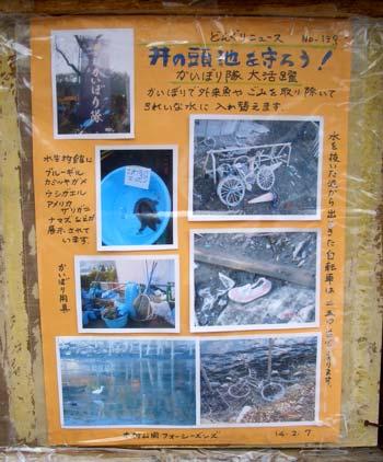 7911_140211donguri